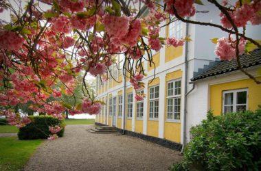 Hvor finder jeg de bedste kursuslokaler og konferencecenter i Danmark?